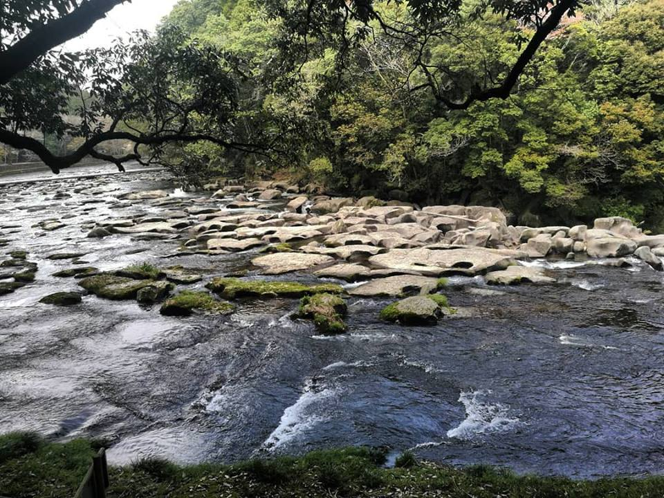 riverbed with potholes and trees amazing fun interactive outdoors relax find yourself japan miyazaki