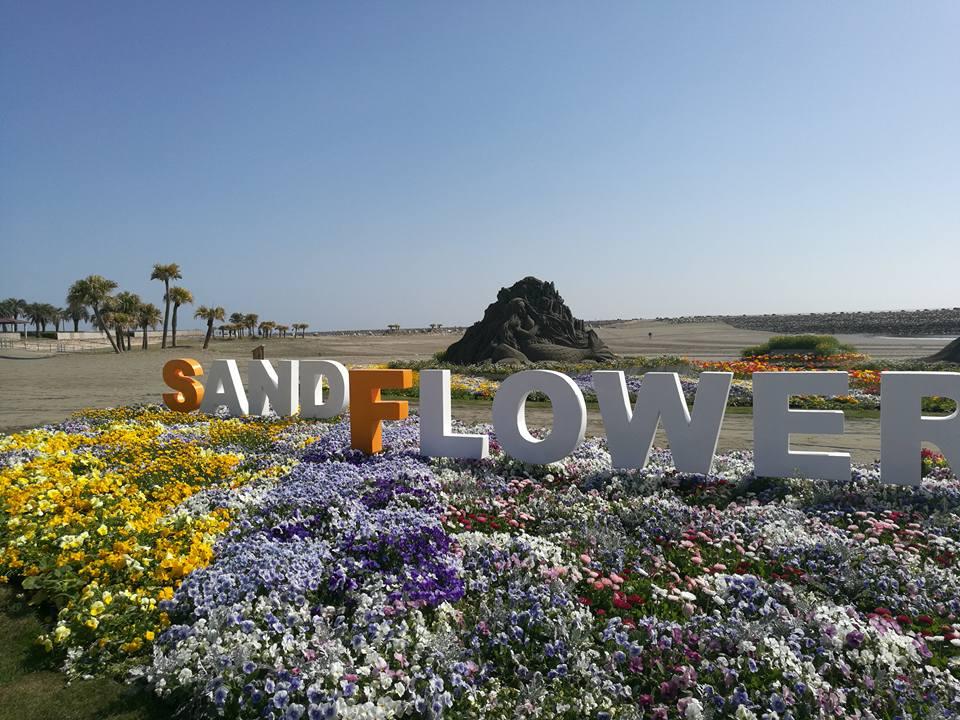 sand flower festa hitotsuba beach park miyazaki the beach burger house view