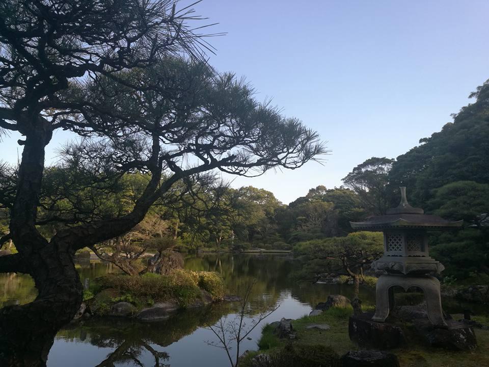 japanese tea garden miyazaki