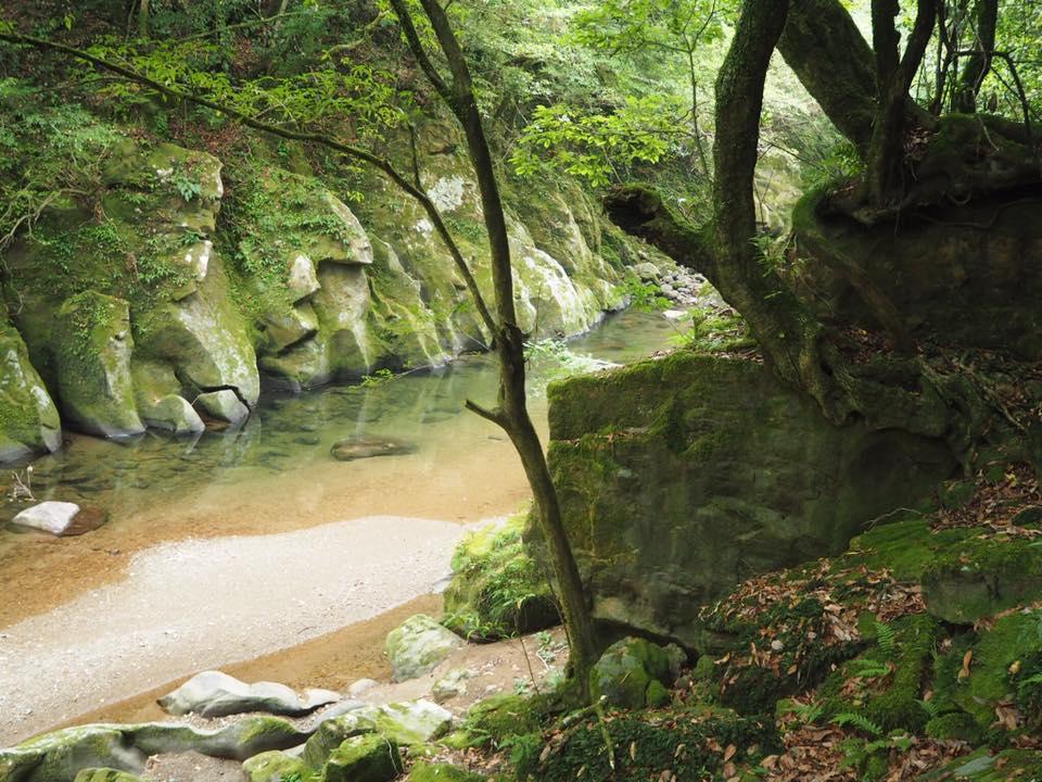 kaeda valley forest bathing spa wow beautiful miyazaki dating spots