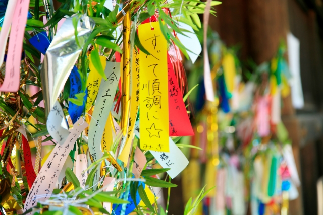 stargazing outdoor activity miyazaki summer tanabata