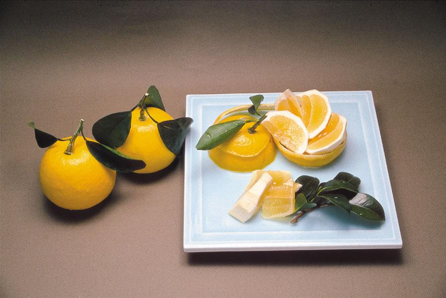 hyuuga natsu souvenir miyazaki delicious fruit